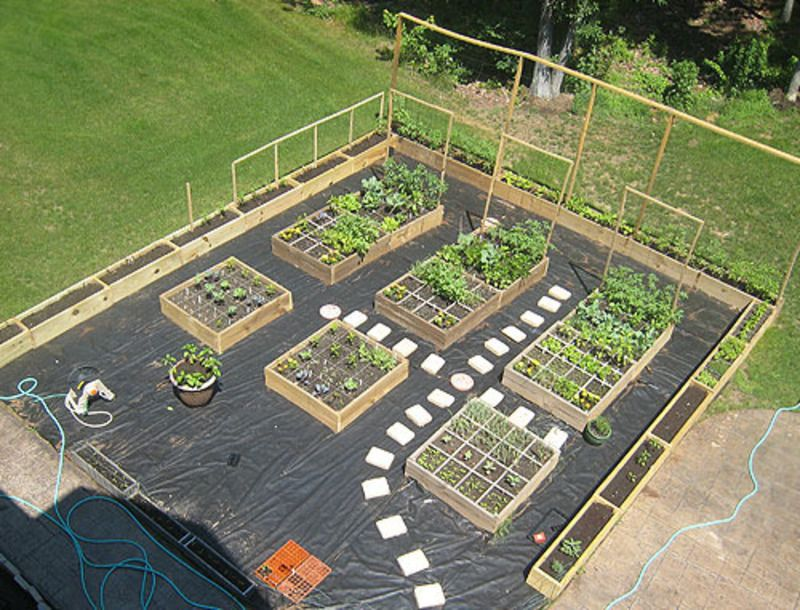 25 Best Ideas About Vegetable Garden Layouts On Pinterest