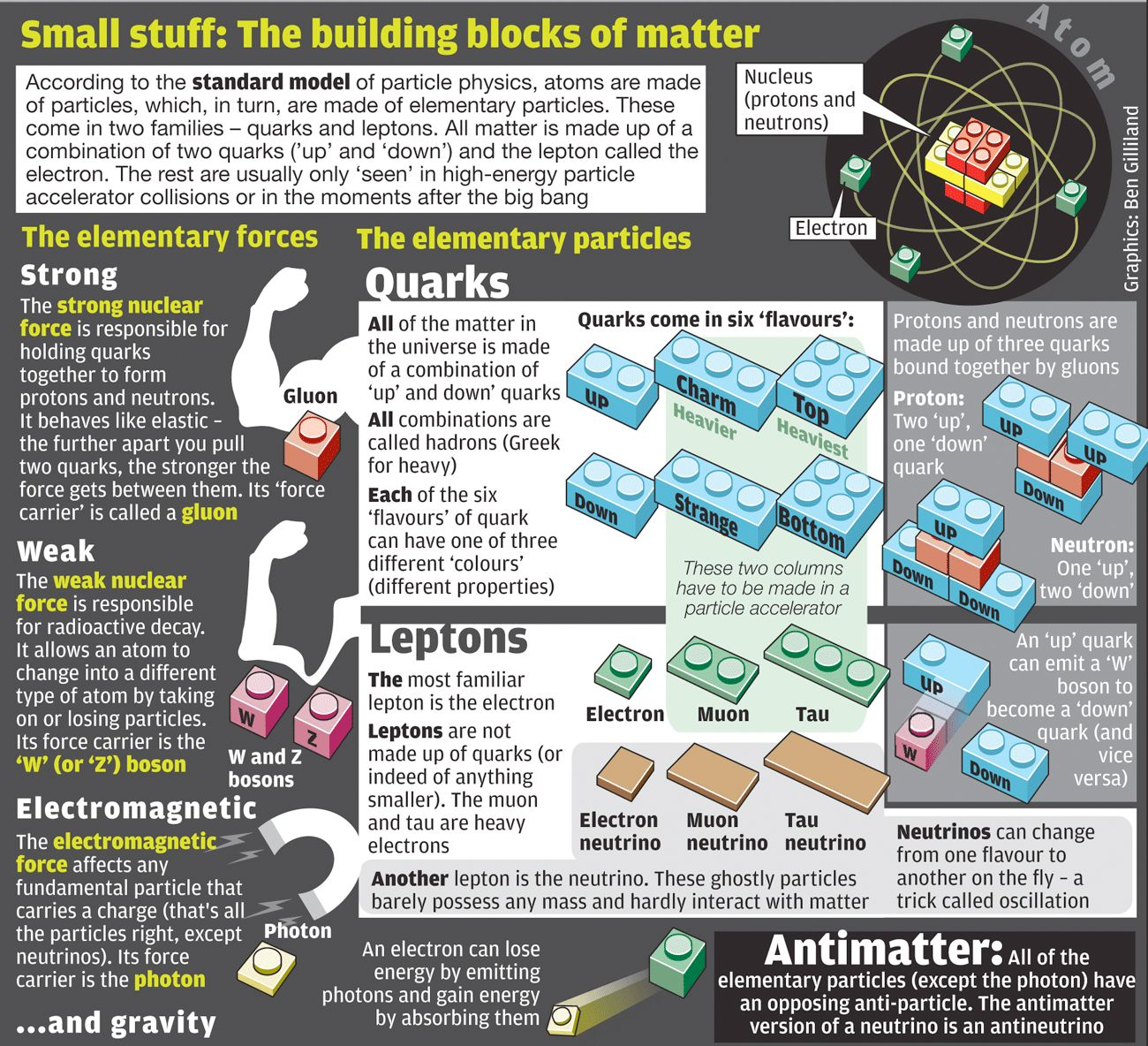 Infographic The Standard Model Of Particle Physics