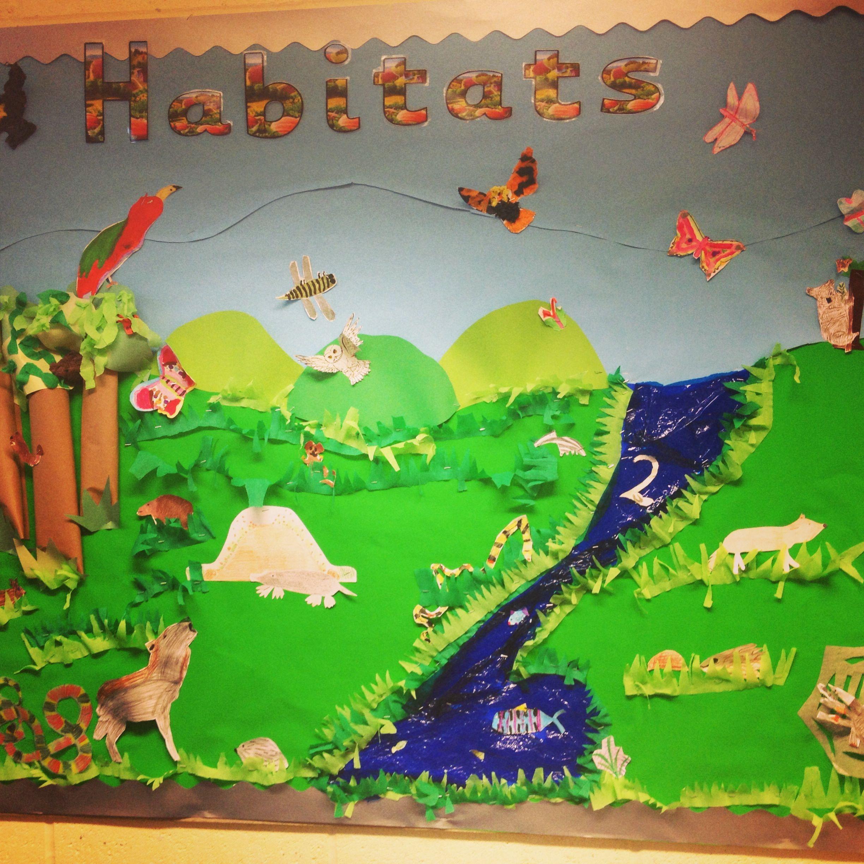 Habitats Display Board