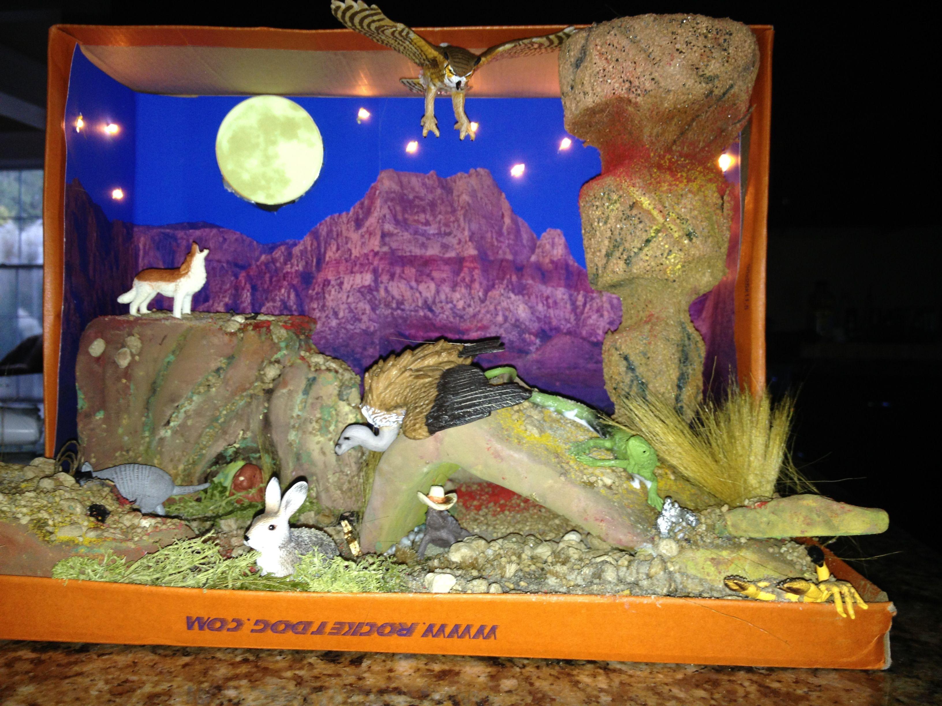Shoebox Desert Diorama Made For 3rd Grade Project