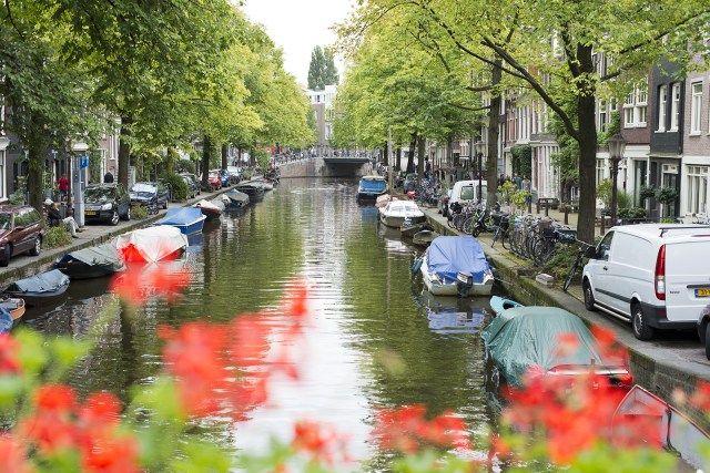 Resultado de imagem para amsterdã turismo