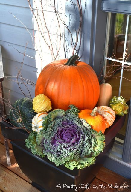 Kale Pumpkin And Twigs For A Fall Container Garden Yard