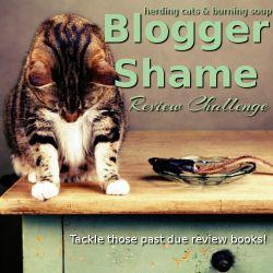 Blogger Shame 2016
