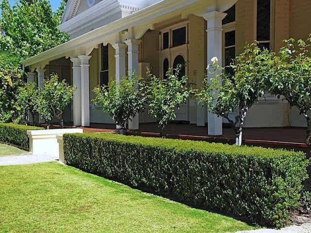 semi formal small gardens australia