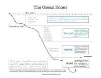 Ocean Zones Worksheet | www.pixshark.com - Images ...