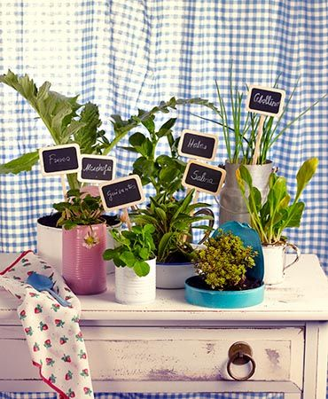 Your Little Garden At Home Bring A Corner Of Your Home To Life