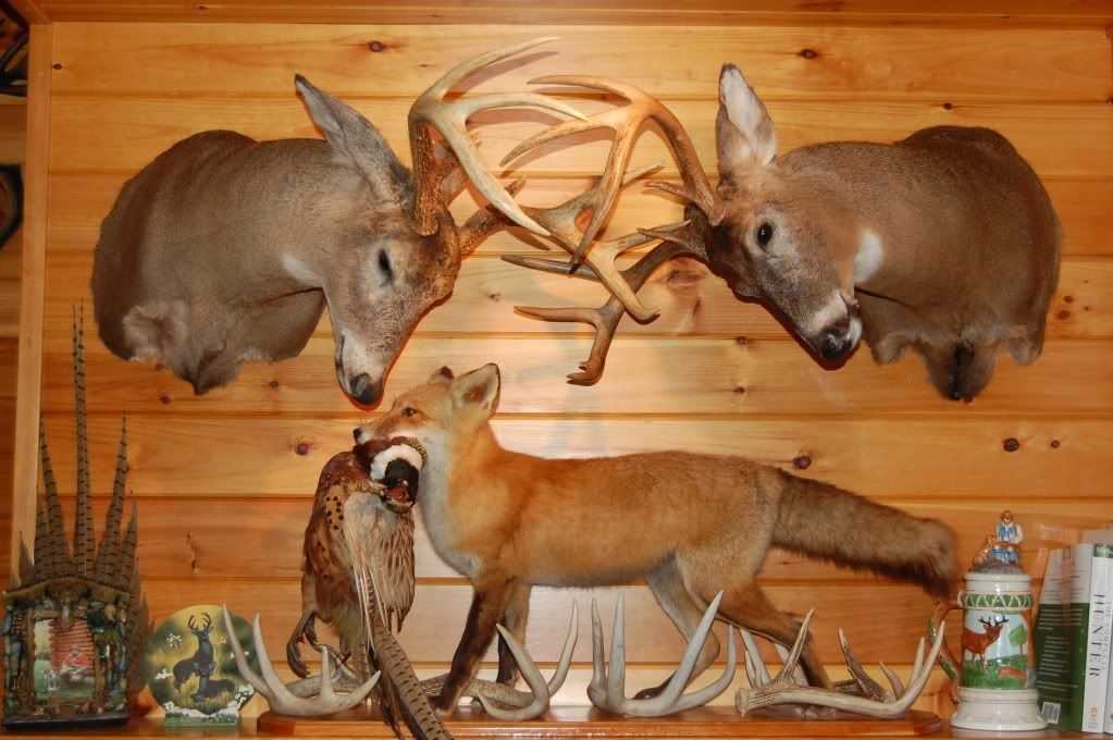 Fox Hunting Decor For The Home