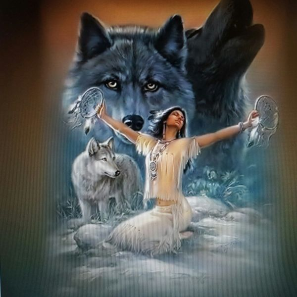 "Large 30"" X Indian Wolf Rv Trailer Wall Mural Decal"