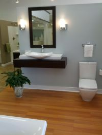 pictures of modern handicap bathrooms | For the handicap ...