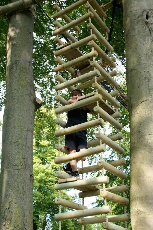 15 Awesome Treehouse Ideas For You And The Kids! Treehouse Ideas