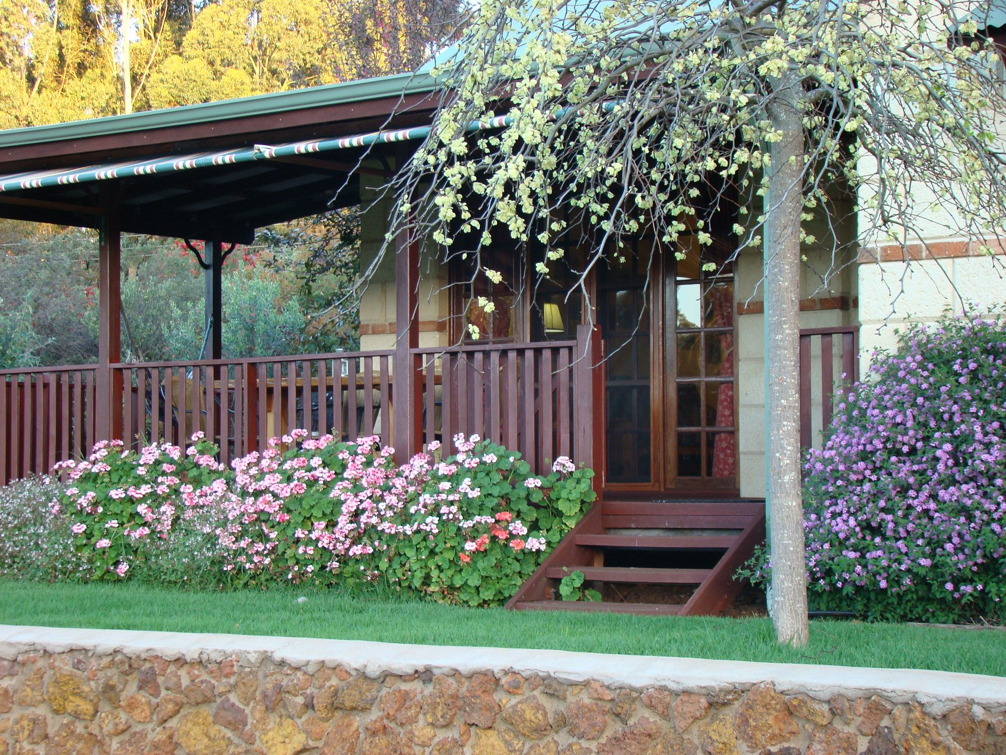 Cottage Gardens Australia Front Yard & Back Yard Pinterest