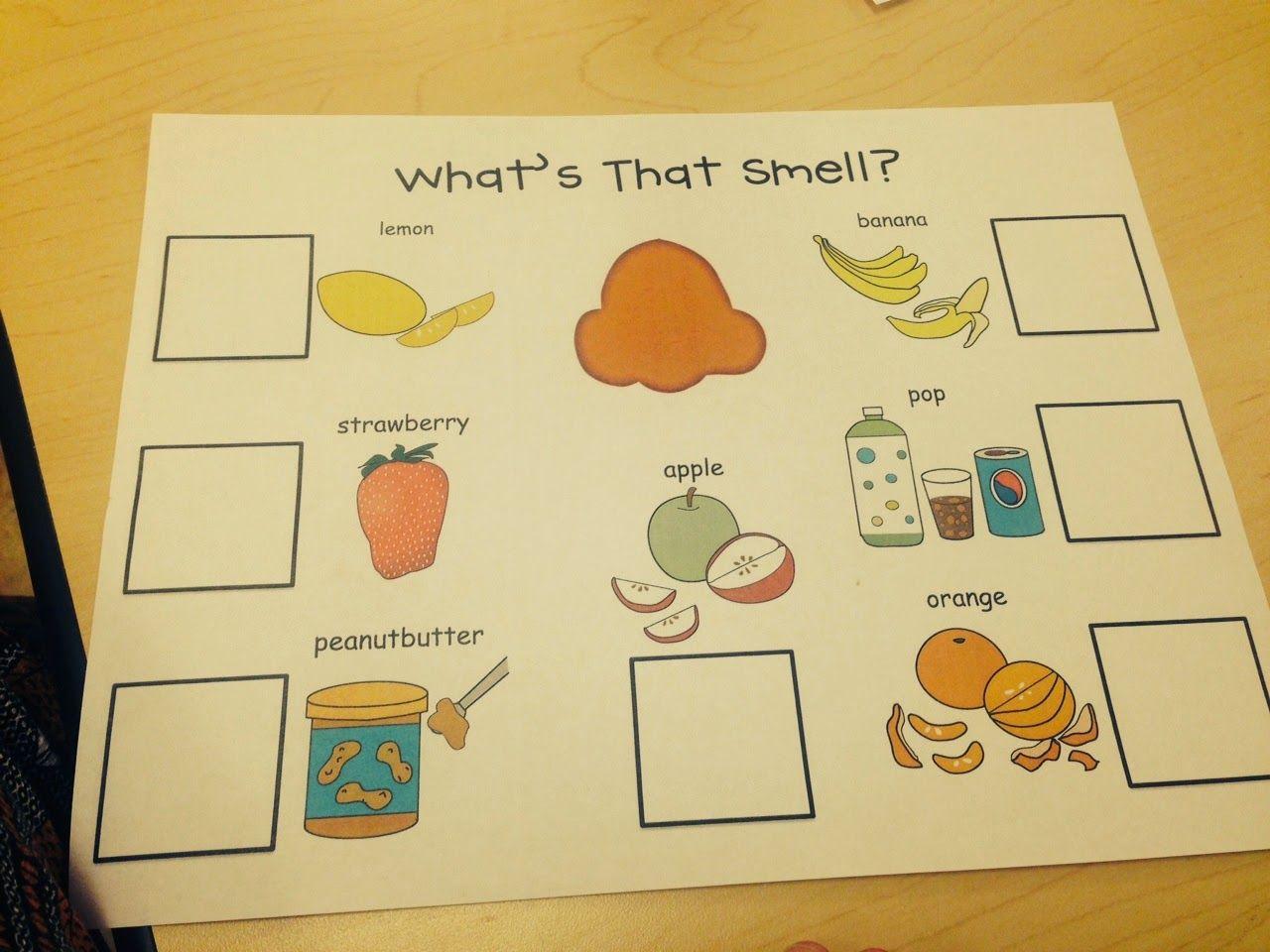 Sense Of Smell Activities From Preschool Wonders