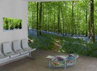 Wall Murals Nature Inspired by Nature - Wallpaper Mural ...