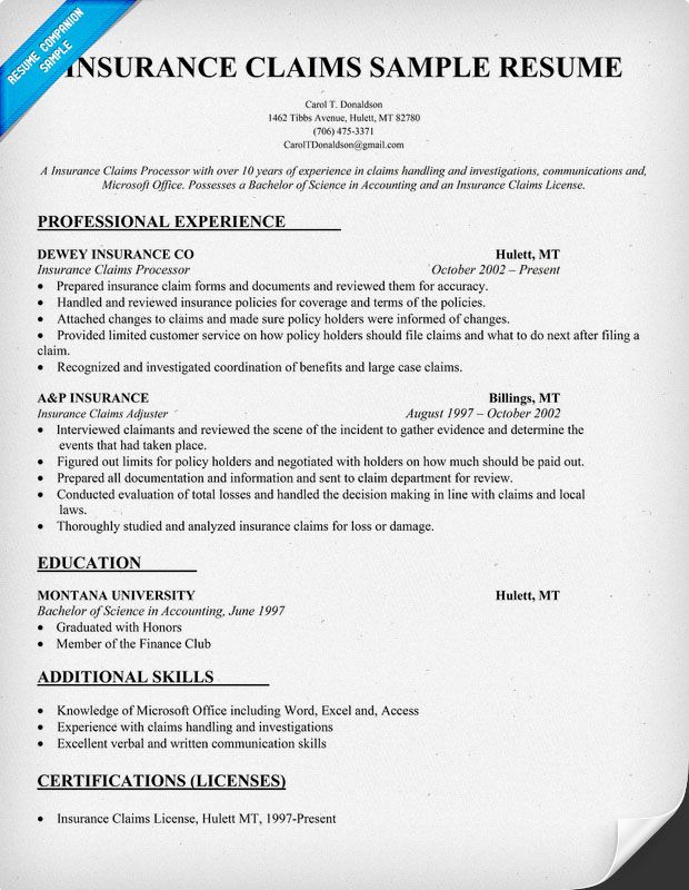 resume templates for insurance claims adjuster