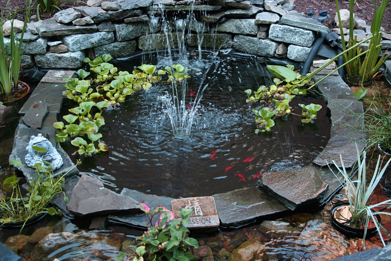 Fish Pond Decorations
