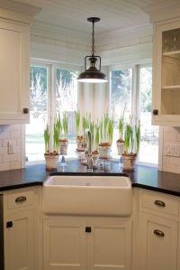 Kitchen sink window with light fixture, plants, farmhouse