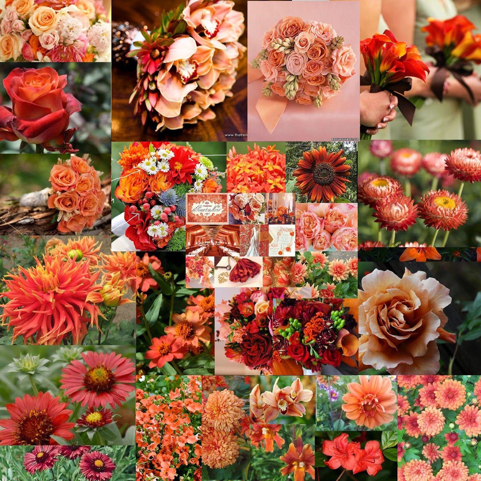 Fall Wedding Coral