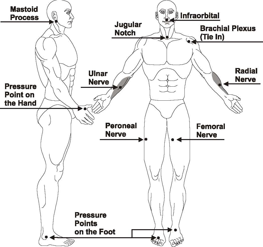 Shotokan Karate Diagram Of Fatal Point Of Body