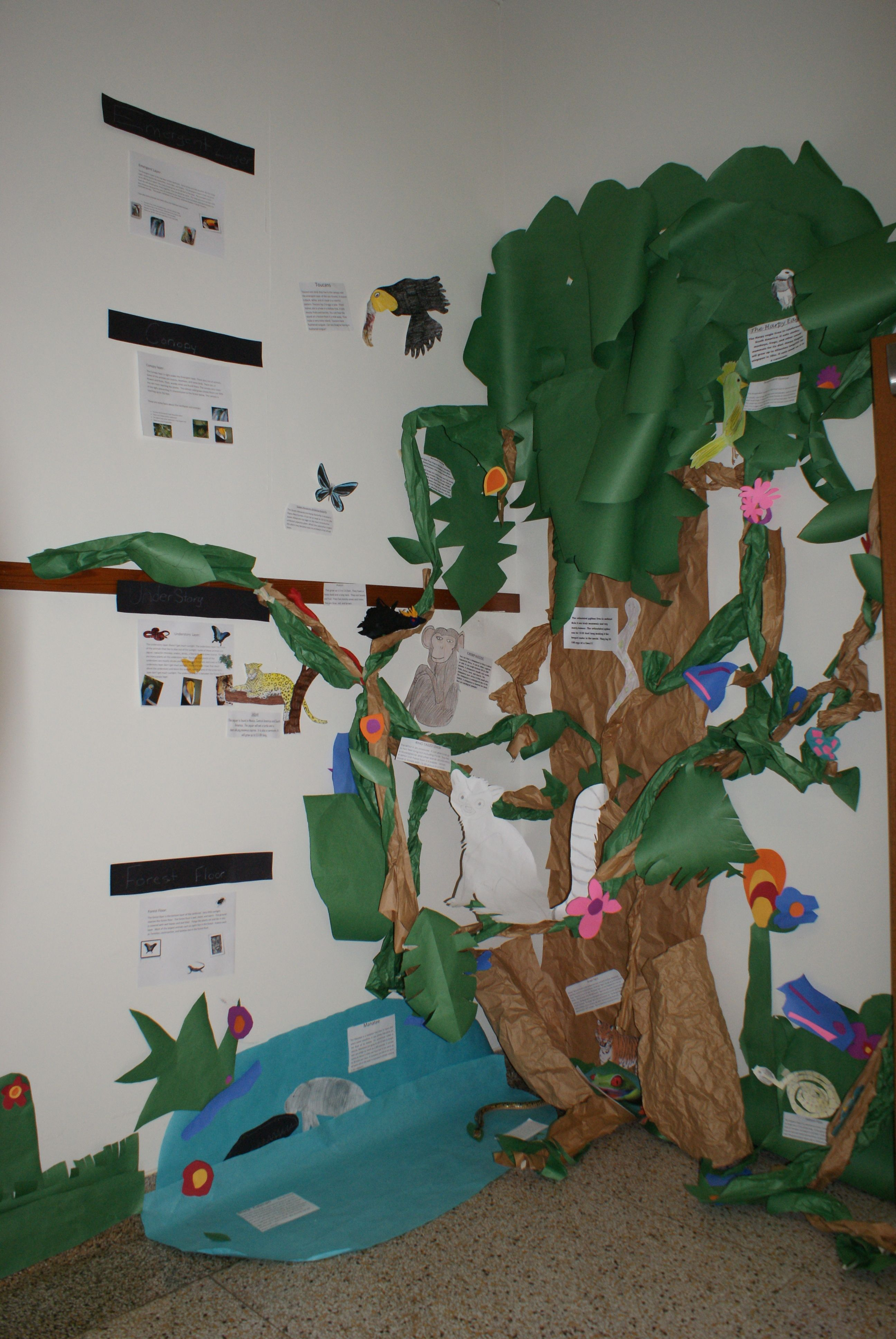 What A Fabulous Way To Show The Different Ecosystems In