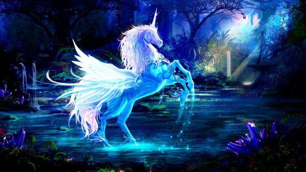 Fantasy Horse Wallpaper Drawings