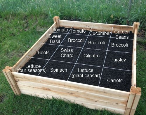 """Square Foot Gardening"""" I'm Reading How To Grow More Vegetables"""