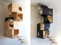 catissa cat house - modern cat tree | Cat entertainment ...