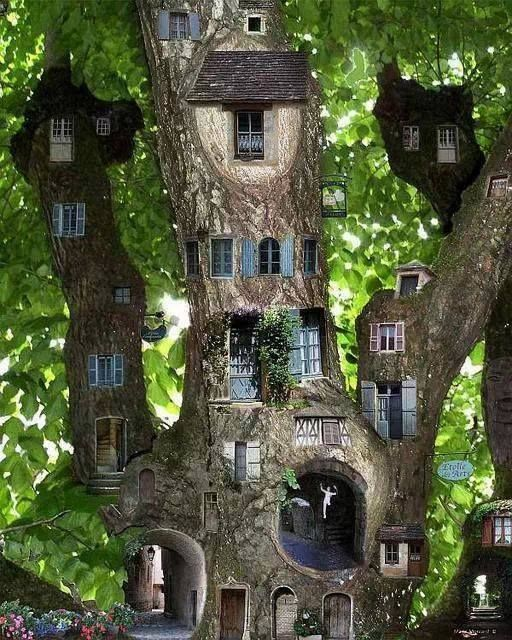 Tree House Fun! Treehouse Tree Houses And House