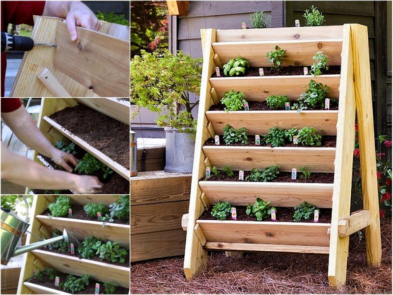 17 Best Images About Vegetable Gardening On Pinterest Gardens