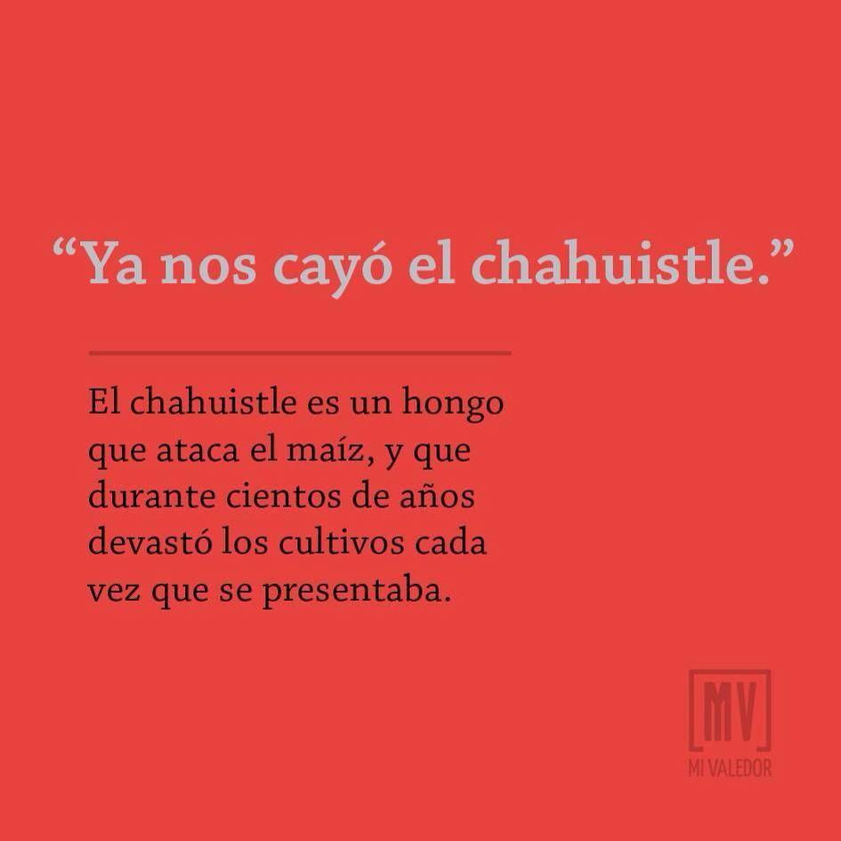 Funny Spanish Phrases Translated English