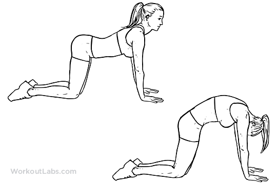 Everyday Knee Stretches And Knee Exercises To Prevent Knee