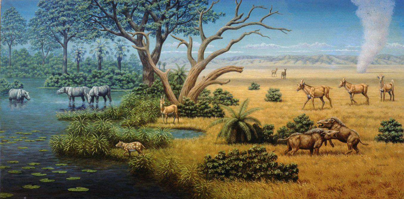 Dinosaurs Chasing Human