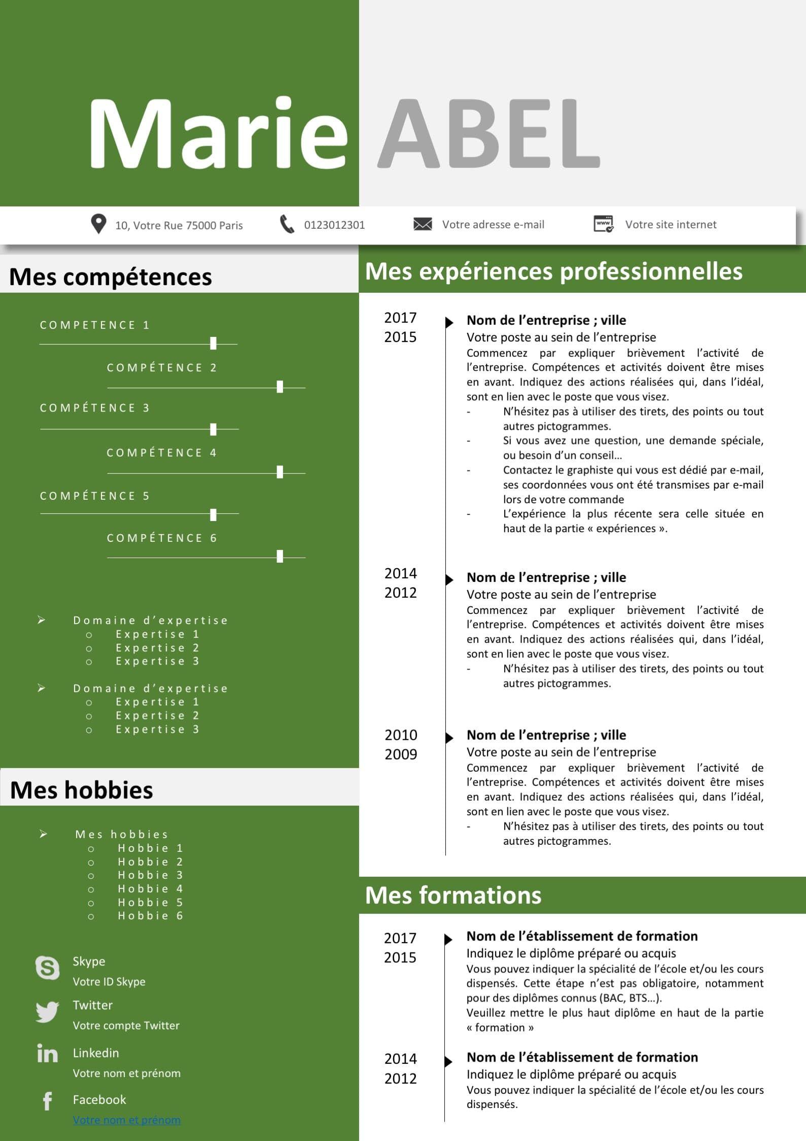 cv chronologie competence