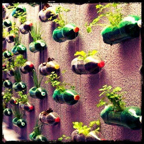 Great Diy Garden Ideas The Different DIY Vertical Garden Daddy
