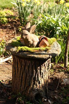 It's Spring! Good Idea For A Tree Stump Creative Ideas