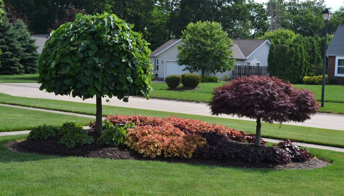 Front Yard Island Landscapes Landscaping Idea For An Island