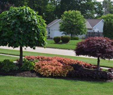 landscaping island ideas | landscaping ideas for an island