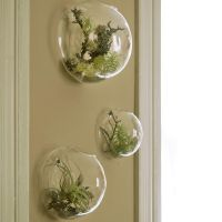 3PCS/set Wall Bubble Terrariums Glass Wall Vase for ...