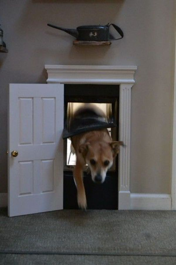 Genius Install A Doggie Door Into The Laundry Room And Make It A