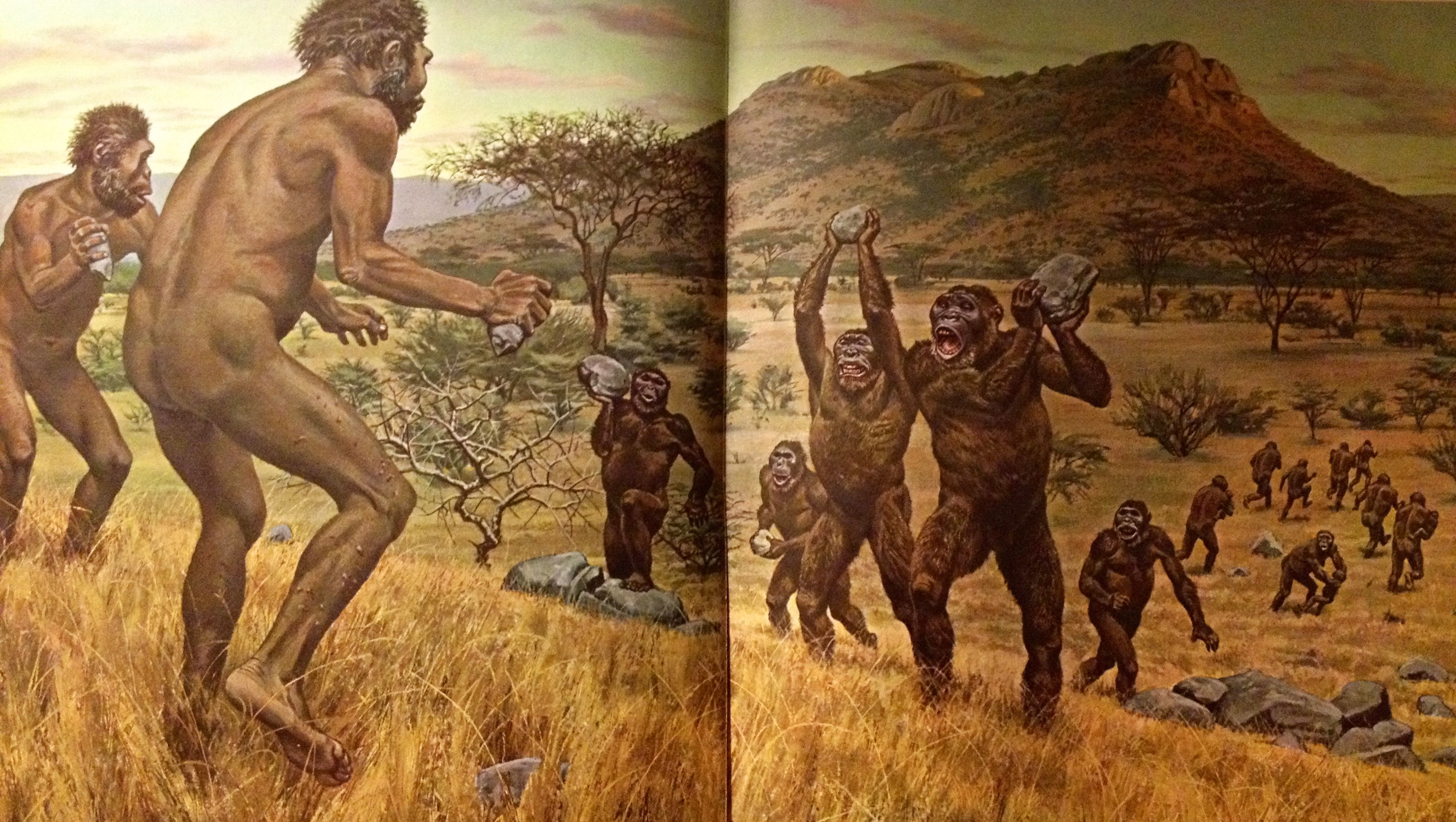 Life Magazine Book Titled Early Man