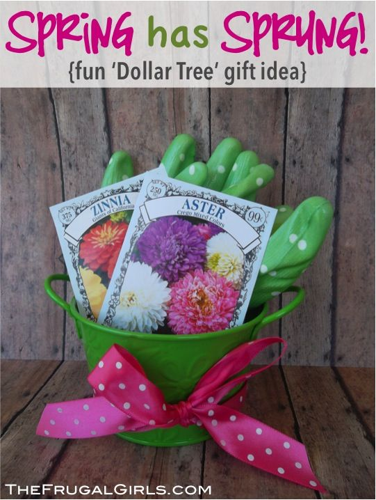 Sweet Little Gardening Gift Ideas For Your Favorite Gardener