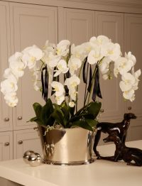 Orchid in a Large Champagne Cooler | RTfact | Artificial ...