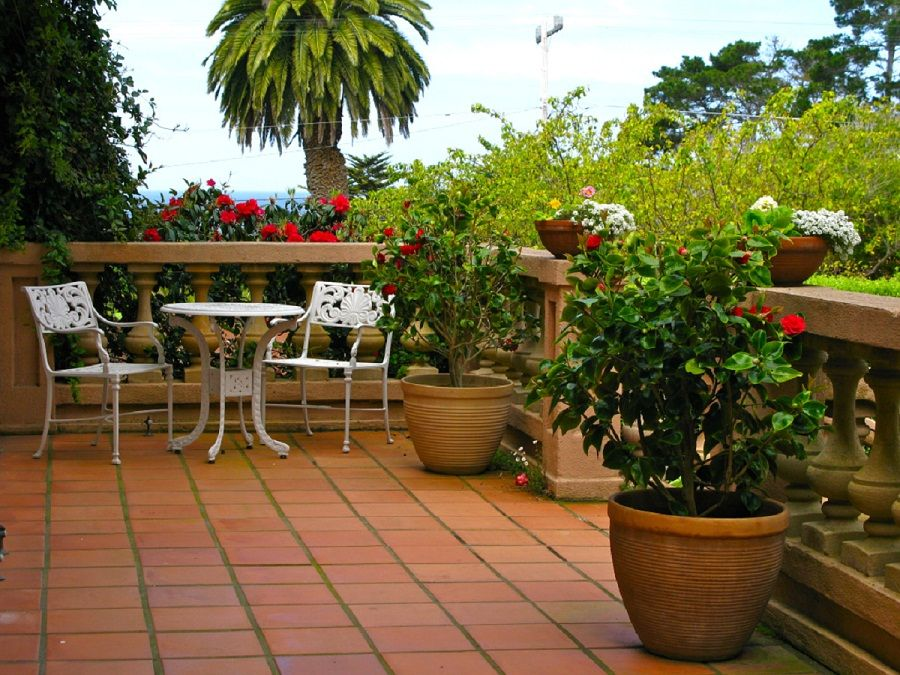 Decorating Terrace Garden Design Ideas With Flower JARDINES