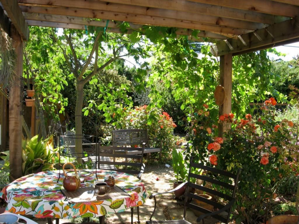 Tropical Outdoor Living And Garden Pergola With Variety Of Flowers