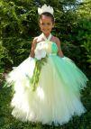 Princess Tiana Costume Tutu DIY