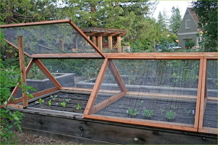Elevated Gardening Boxes