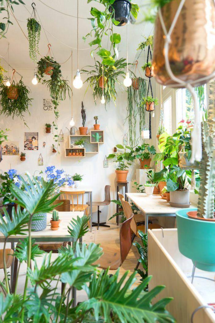 99 Great Ideas To Display Houseplants Garden Web Balcony