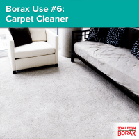 Borax Use #6 - Carpet Cleaner: Get rid of carpet stains by ...