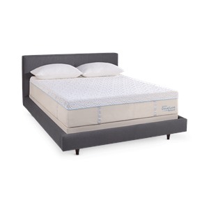 Support And Cool Your Entire Body With The Tempur Cloud Luxe Breeze Pedic Mattresses For Hot Sleepers At Relax Back Today