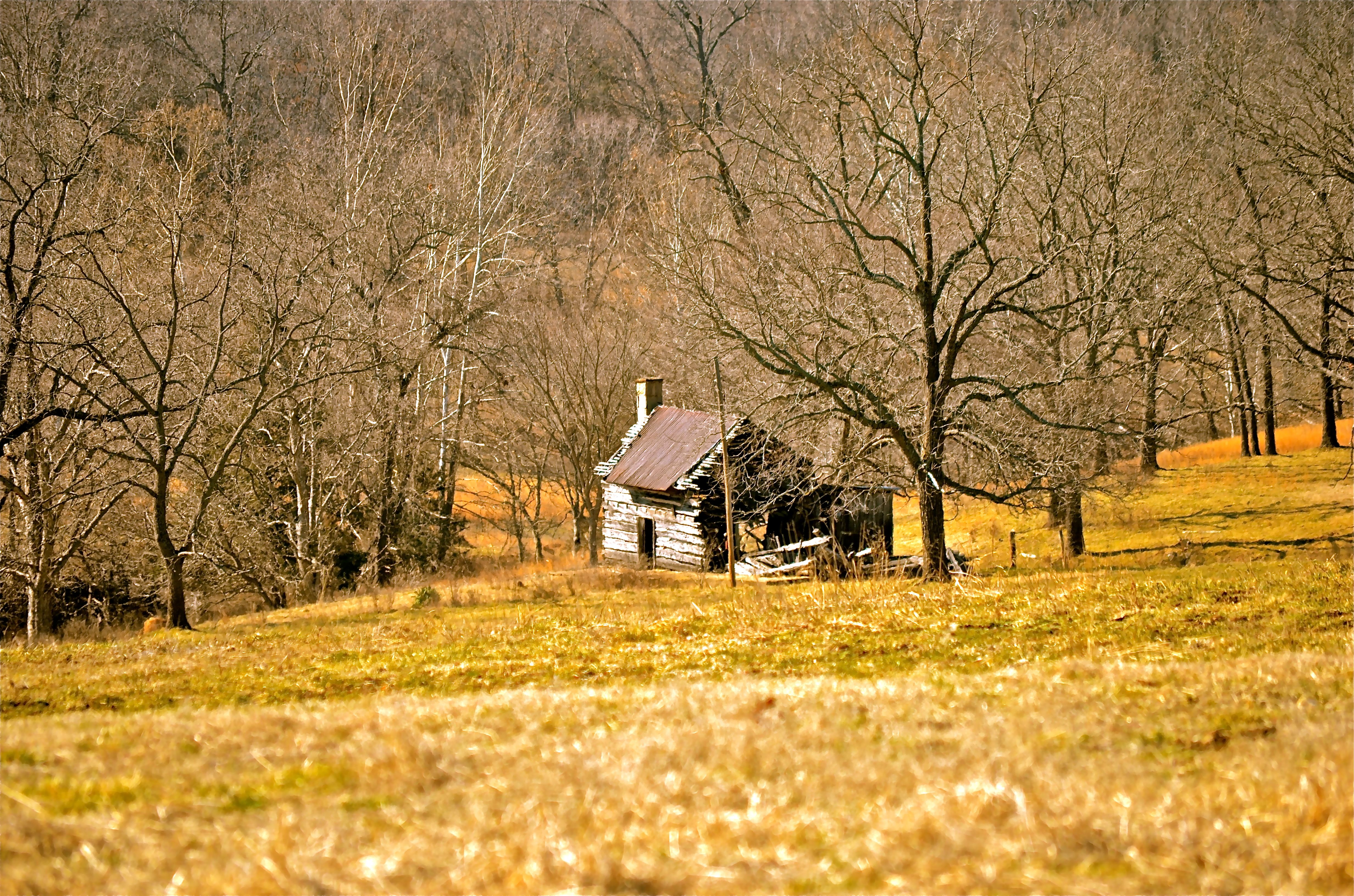 A lonesome old cabin in the Ozark Mountains of Taney