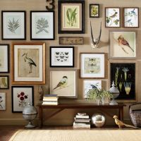 A stunning gallery wall full of natural curiosities ...